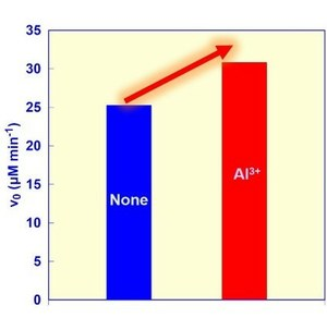Comparison of malate production rates from CO2 and pyruvate with and without aluminum ions
