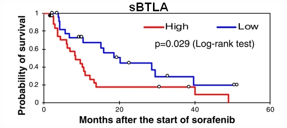Fig.1 Kaplan-Meier survival analysis of 53 patients with advanced HCC at baseline including high levels of sBTLA and low levels of sBTLA