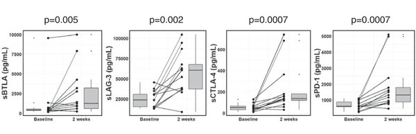 Fig. 3 Profiling of sBTLA, sLAG-3, sCTLA-4 and sPD-1 levels in patients with HCC at baseline and 2 weeks of sorafenib treatment. The vertical length of the box shows the interquartile range. The lines in the boxes shows the median values. The error bars show the minimum and maximum values (range). Wilcoxon signed-rank test was used. A p value of <0.05 was considered statistically significant.