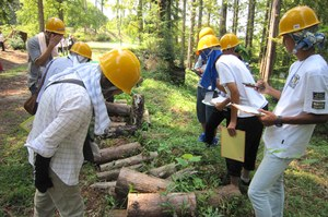 Observation of the corrosion condition of logs