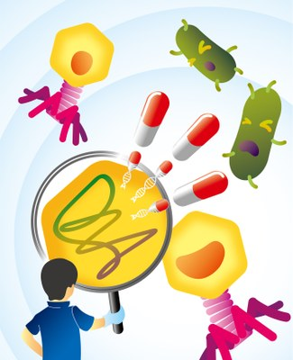 Phage-derived anti-bacterial enzyme attacks C. difficile