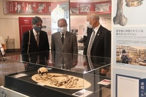 Ancient human bones exhibit.
