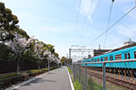 s_spring_05.jpg