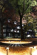 s_autumn_2015_003.jpg