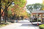 s_autumn_2016_07.jpg