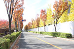 s_autumn_2016_13.jpg