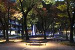 s_autumn_2016_20.jpg