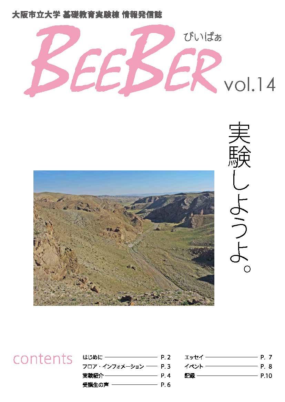 beeber14.jpg