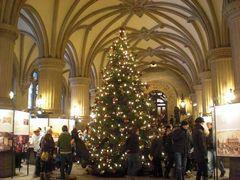 市庁舎に飾られたクリスマスツリー