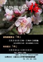 理学部附属植物園「植物観察会『梅』~春をつげる梅をご一緒に~」及び「特別展示『梅』」を開催(2月23日~3月10日)