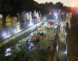理学部附属植物園で「夜咲き熱帯スイレンの観察会(夜間特別開園)」を開催します