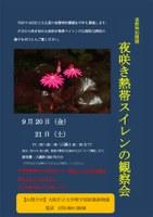 理学部附属植物園で「夜咲き熱帯スイレンの観察会(夜間特別開園)」を開催(平成25年9月20日・21日 ※小雨実施)