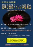 理学部附属植物園 夜間特別開園「夜咲き熱帯スイレンの観察会」を開催