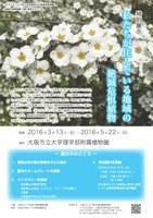 理学部附属植物園 特別展示「私たちが住んでいる地域の絶滅危惧植物」(3/13~5/22)
