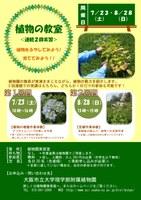 理学部附属植物園「植物の教室」(7/23、8/28)