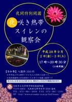夜間特別開園 「夜咲き熱帯スイレンの観察会」(9/2~9/3)