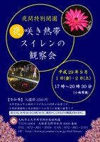 夜間特別開園 「夜咲き熱帯スイレンの観察会」