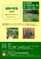 理学部附属植物園 第3回植物の教室「ハーブの育て方・楽しみ方」を開催