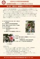 理学部附属植物園~専門家と貴重な古典品種を鑑賞~「大阪市大・植物園のツバキコレクション」