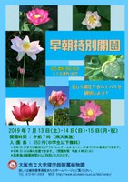 理学部附属植物園 早朝特別開園 ~65品種が勢ぞろい!~ 美しく開花するハナハスを観察しよう!