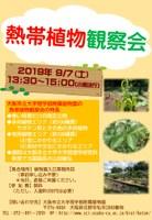 園長と観察! エキゾチックな熱帯植物を200種展示 「熱帯植物観察会」を開催します!