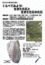 化石み―つけた!「生きた化石と生きた化石の化石」(理学部附属植物園)