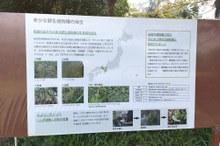 「西日本絶滅危惧植物エリア」をオープン!