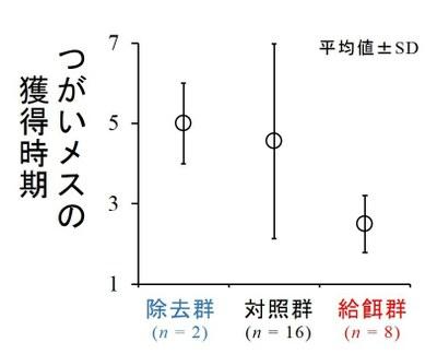 図7 実験群ごとの、オスがつがいメスを獲得した時期。縦軸の値が小さいほど、オスが早い時期にメスを獲得できたことを意味する。調査は4日に1回行ったので、このメスの獲得時期は4日間隔でまとめている。例えば、獲得時期「1」は「2/1~2/4」のあいだに、獲得時期「2」は「2/5~2/9」のあいだに、メスを獲得できたことを意味する。