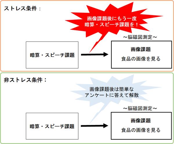 図2 実験概要
