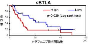 図2  BTLAが高い患者さんと低い患者さんの生存曲線