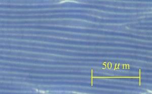 200413-2.jpg
