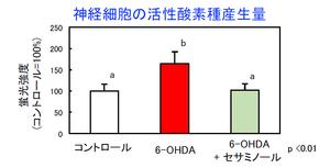 図2:神経細胞の活性酸素種産生量