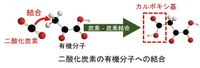 200904-ken.jpg