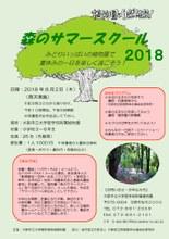 绿意盎然 暑假记忆~森林暑期班开班啦~(理学院附属植物园)